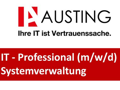 IT Professional Austing